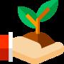 grow-plant